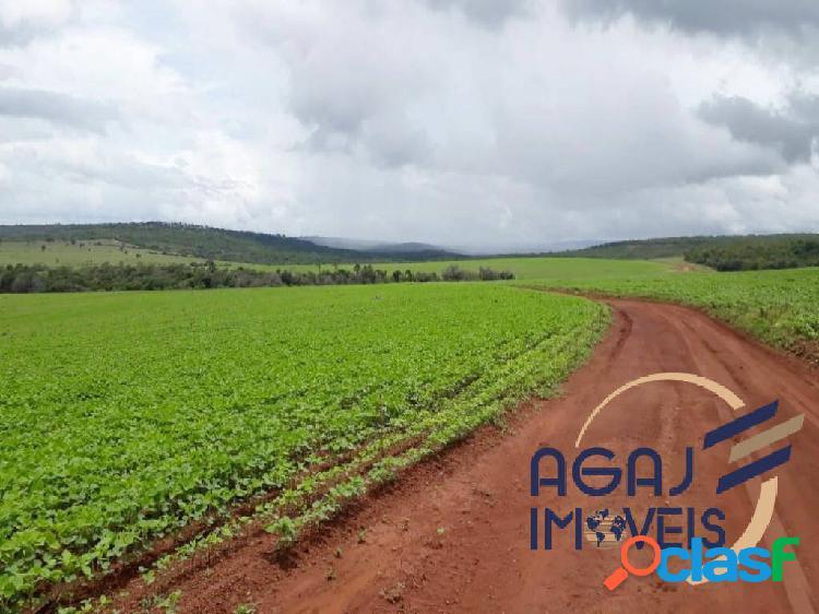 Fazenda em doverlândia-go   266 alqueires   lavoura - pecuária