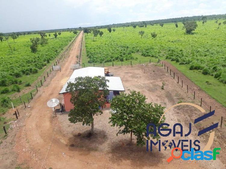 Fazenda em formoso do araguaia-to | 243 alqueires | dupla aptidão