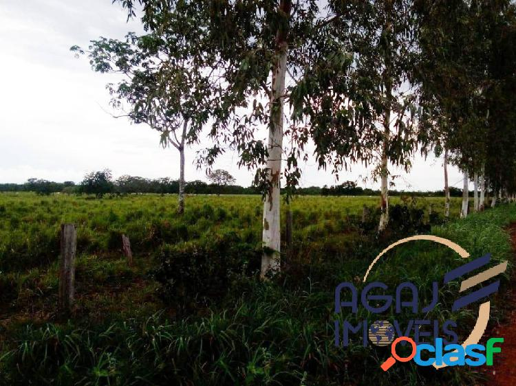 Fazenda em marianópolis do tocantins-to   270 alq