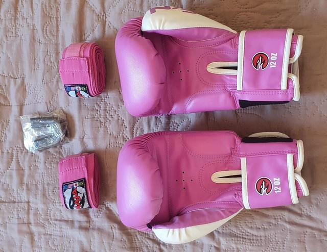 Kit muay thai boxe naja luva + bandagem + bucal + bolsa