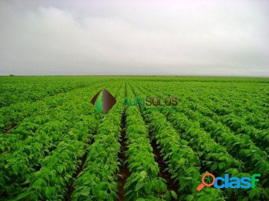Fazenda 2.950 há p/ soja grande oportunidade.