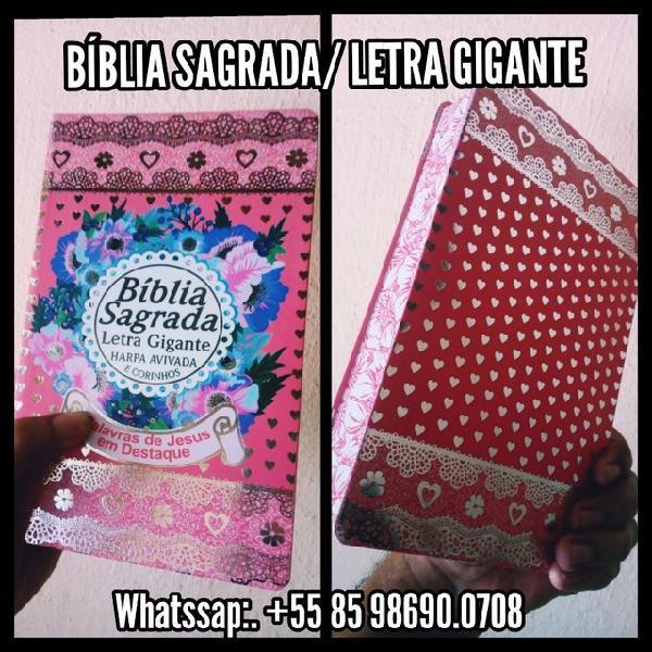 Bíblia sagrada/ letra gigante/ pink / harpa cristã