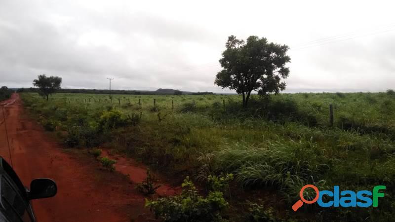 183 Alqs Plana Dupla Aptidão Margens Rodovia Lagoa do TO 4