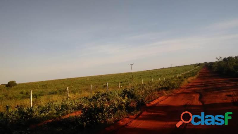 183 Alqs Plana Dupla Aptidão Margens Rodovia Lagoa do TO 3