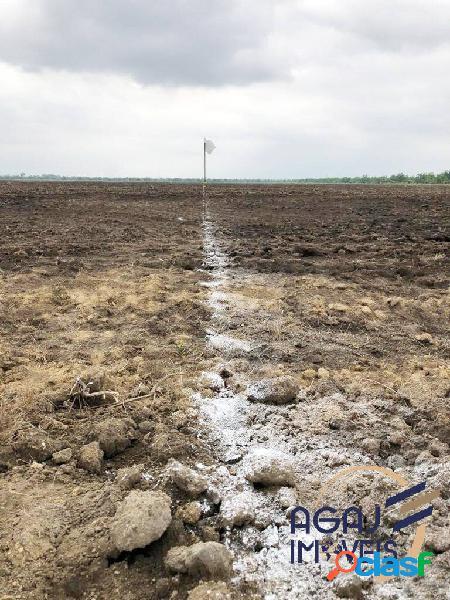FAZENDA EM FORMOSO DO ARAGUAIA-TO | 438,5 ALQUEIRES | DUPLA APTIDÃO 2