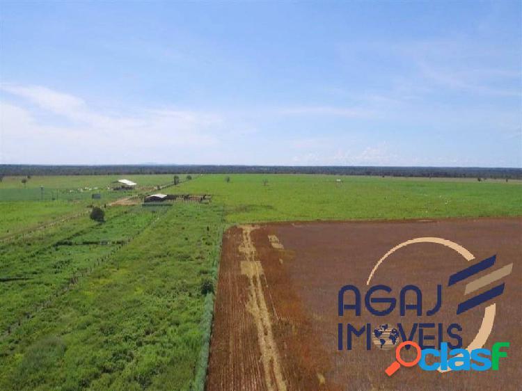 Fazenda em porto nacional-to | 1.218 alq