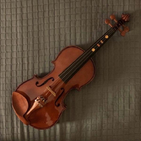 Violino eagle ve441 4/4 c/ case