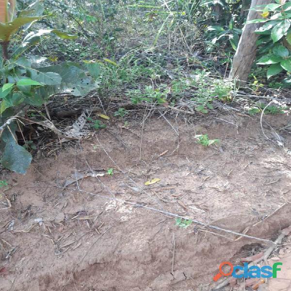 160 Alqs Cultura Boa Logística Muita Água Araguaína TO 13