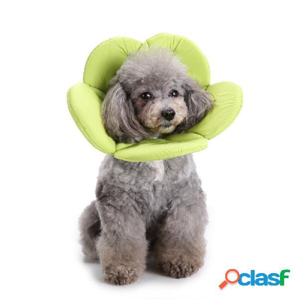 Esponja macia verde flor forma dog cat collar pet círculo cicatrização médica colar anti-mordida