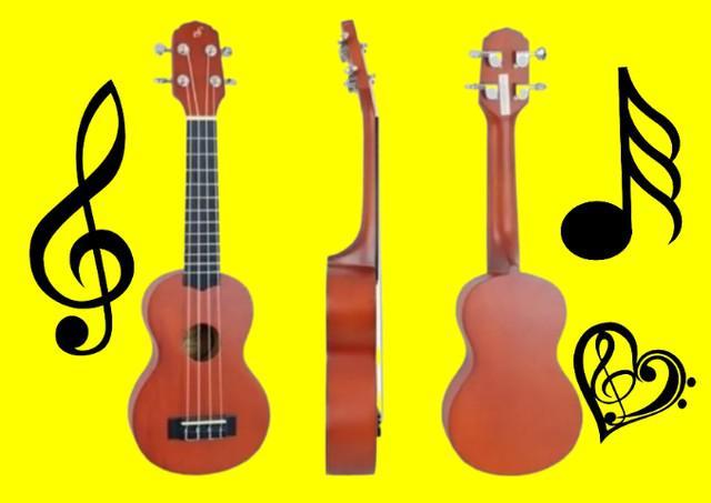 Pra iniciantes e profissionais kit ukulele acústico concert