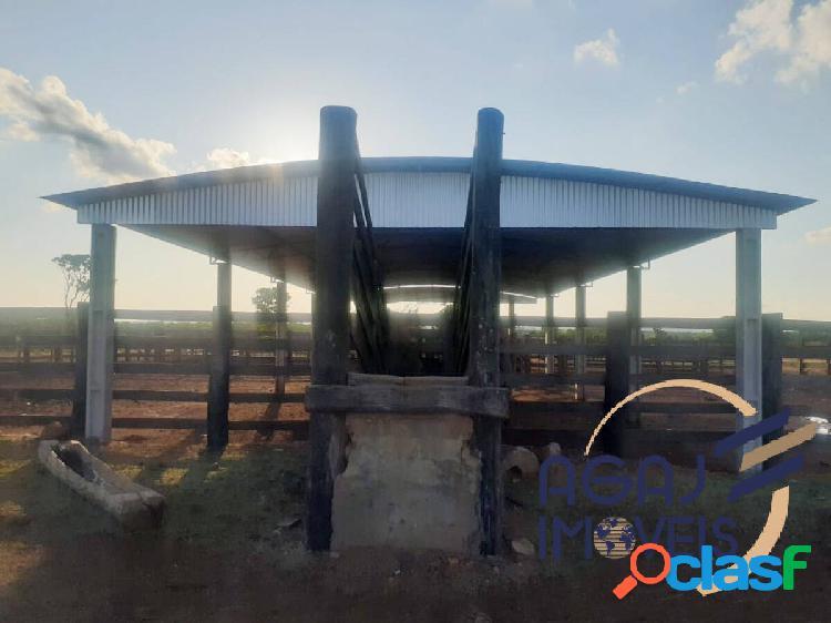Fazenda em araguaçú-to | 1.370 alq