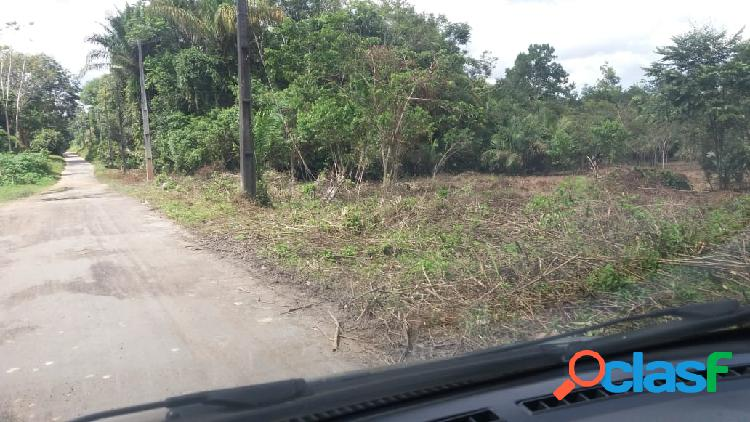 Terreno - venda - manaus - am - tarumã