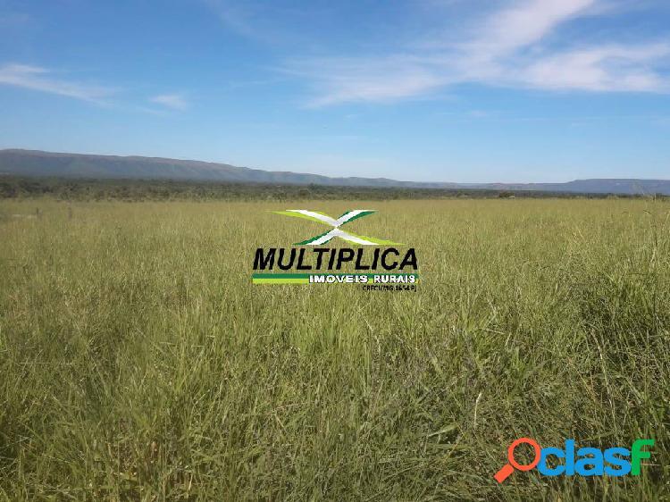 Fazenda arinos mg, agricultura, pecuária, 205 ha, r$ 14.000,00 por ha