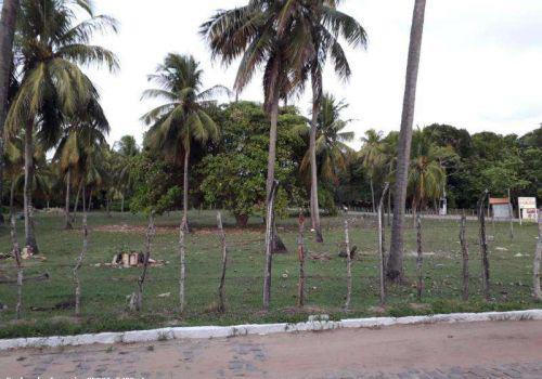 Terreno para venda em nísia floresta, barra de tabatinga