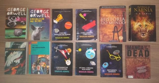 Diversos livros infantis, adulto e didáticos / concursos