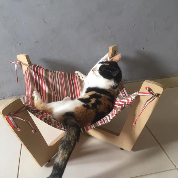 Rede para gatos com suporte