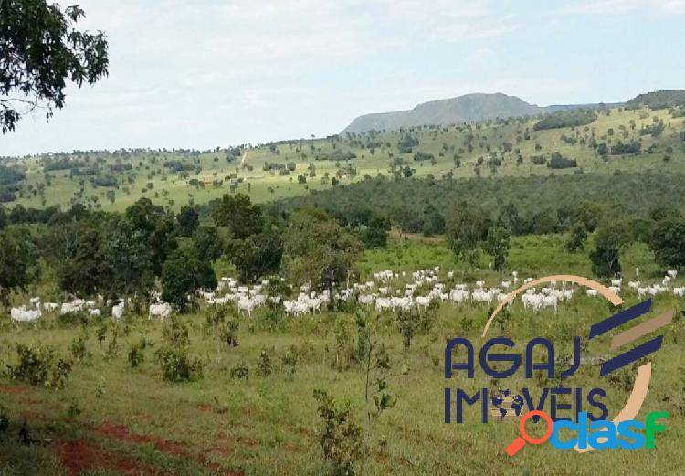 Fazenda em alcinópolis-ms | 510 alqueires (paulista) | pecuária