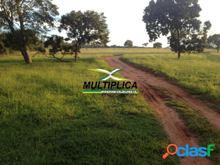 Fazenda uberlândia, agricultura pecuária,150 ha, r$ 41.322,00 ha