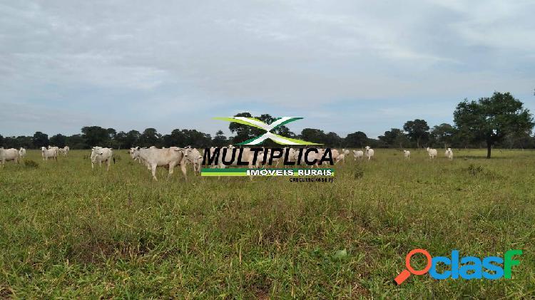 Fazenda união de minas mg, agricultura pecuária, 329 ha, r$ 21.268,00 ha