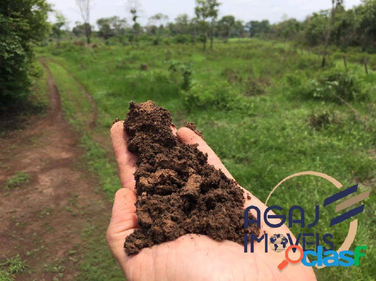 Fazenda em santa maria das barreiras-pa | 465 alqueires | dupla aptidão