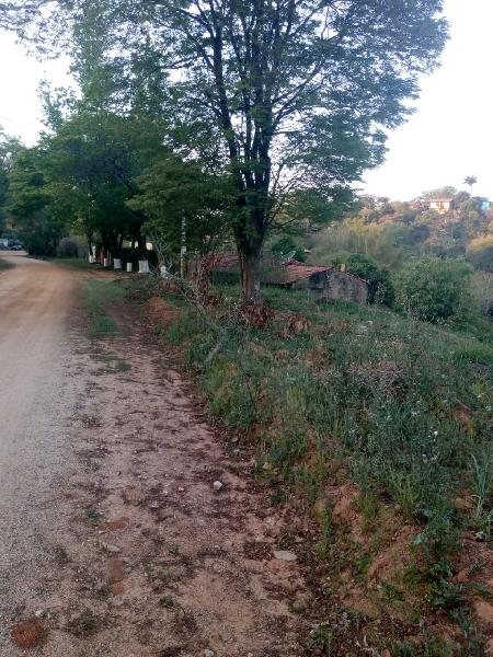 Terreno vale verde
