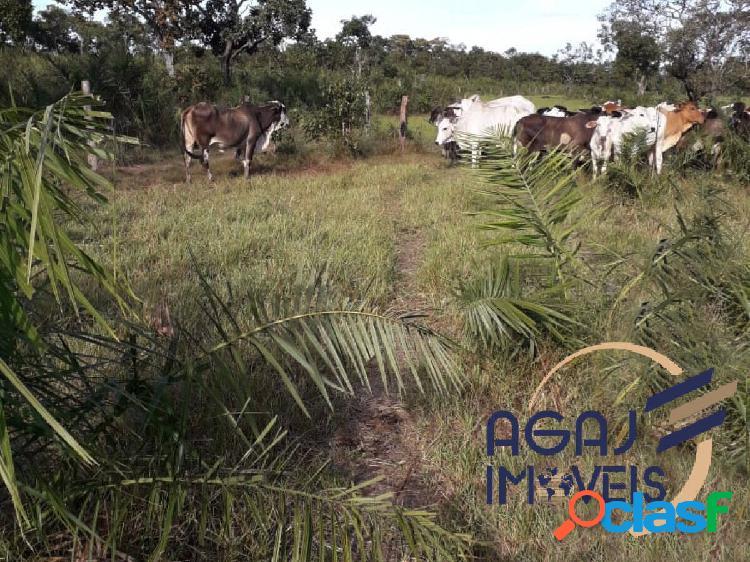 Fazenda em santa maria das barreiras-pa | 195 alqueires | dupla aptidão