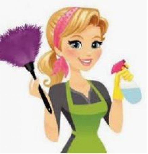 Empregada doméstica e babá com experiência e referências
