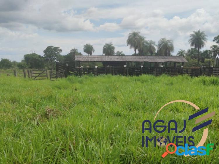 Fazenda em santa maria das barreiras-pa | 274 alqueires | dupla aptidão