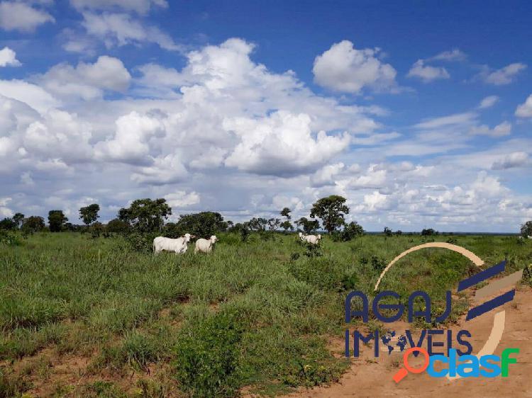 Fazenda em araguaçu-to | 674 alqueires | lavoura - pecuária
