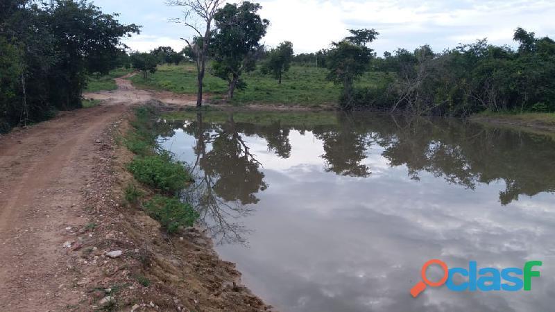 141 Alqs a Melhor Faz. Plana Beira Rodovia 02 Rios Vila a 4km Paranã TO 11