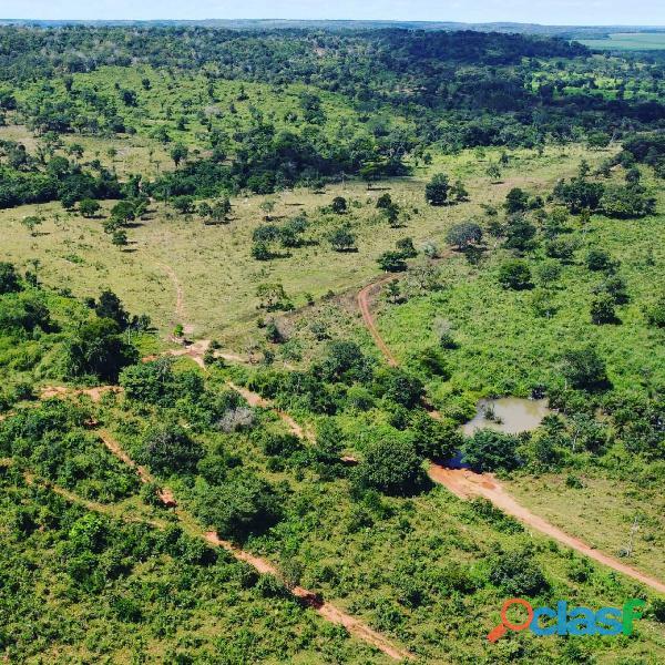 140 Alqs Terra Vermelha Beira Rio Pronta Itapiratins TO 3