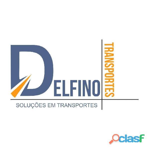 Transporte Escolar Delfino 169
