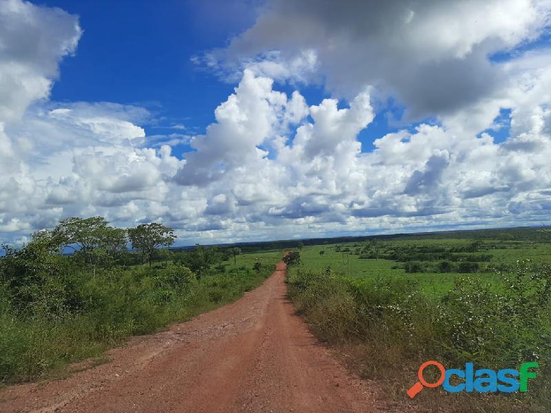 100 Alqs Plana Cerrado Ralo Sem Pedras Região Pindorama TO
