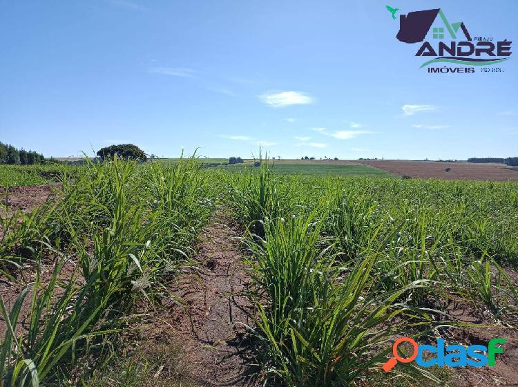 Fazenda, 91 alqueires, região rural, avaré/sp