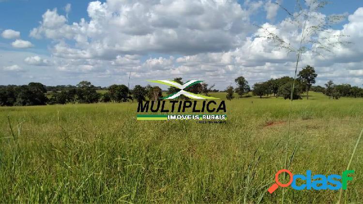 Fazenda carneirinho mg, agricultura pecuária, 636 ha, r$ 37.190 ha