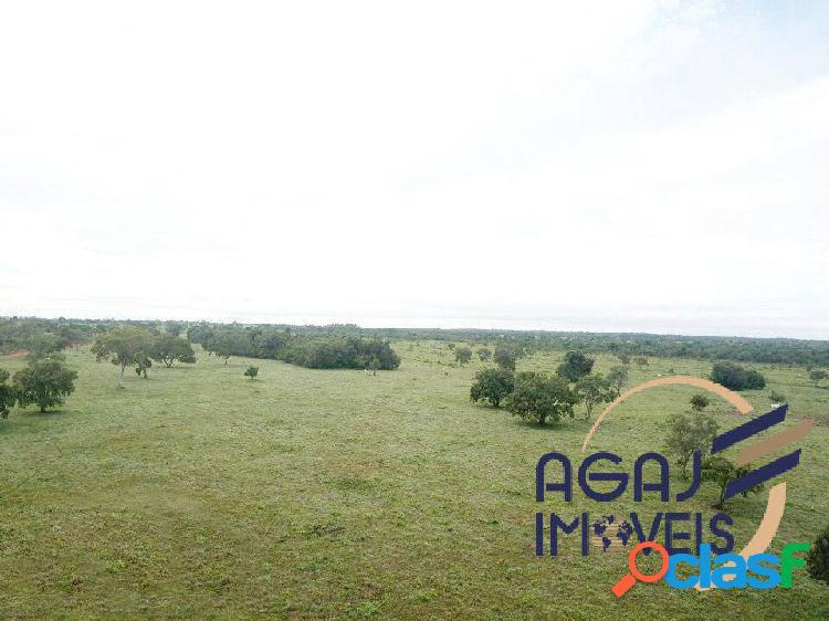 Fazenda em divinópolis do tocantins-to   429 alqueires   dupla aptidão