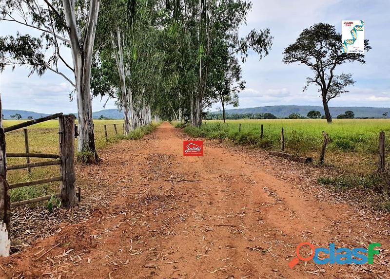 Fazenda dupla aptidão em várzea da palma – mg área 3.500 hectares