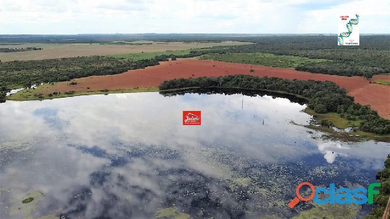 Fazenda dupla aptidão Município de Formoso do Araguaia Tocantins área 1.100 há. 1