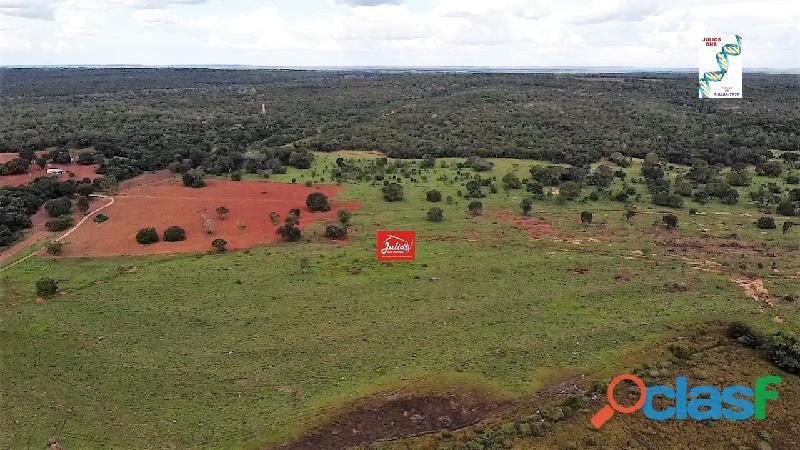 Fazenda dupla aptidão Município de Formoso do Araguaia Tocantins área 1.100 há. 3