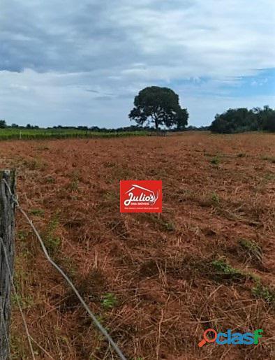 Fazenda dupla aptidão Município de Formoso do Araguaia Tocantins área 1.100 há. 7