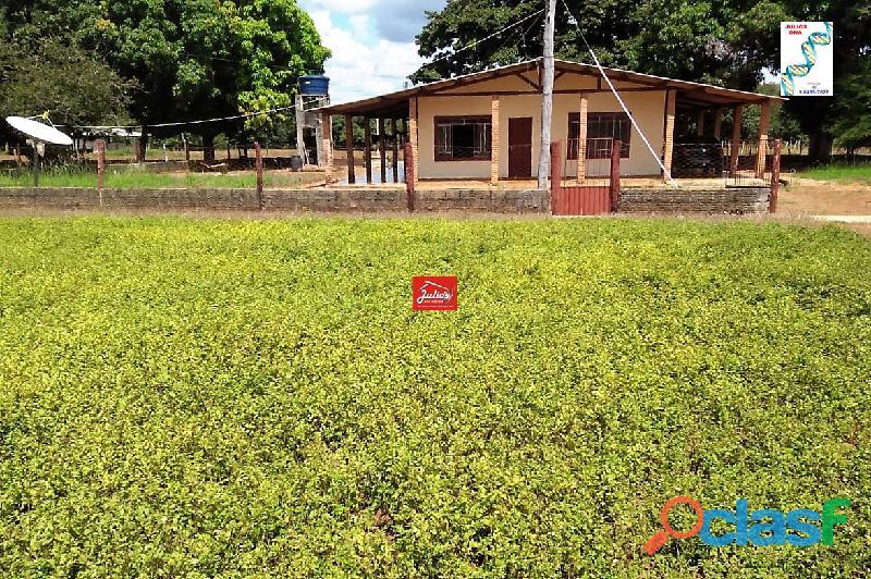 Fazenda dupla aptidão Município de Formoso do Araguaia Tocantins área 1.100 há. 8