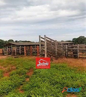 Fazenda dupla aptidão Município de Formoso do Araguaia Tocantins área 1.100 há. 9