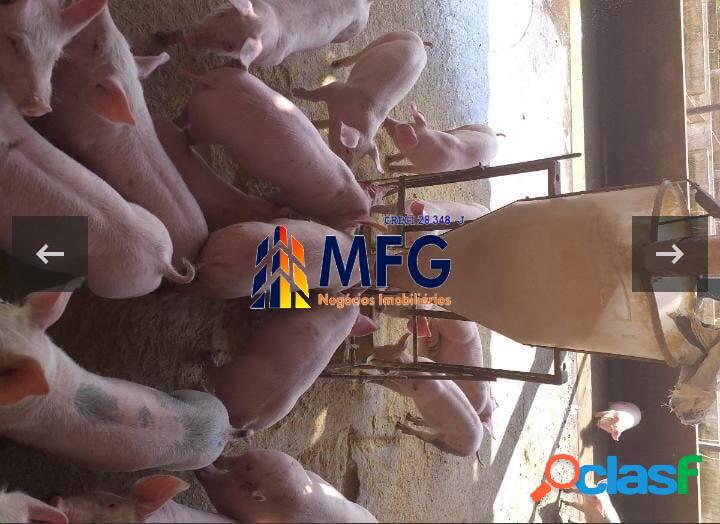 Fazenda leiteira, com 882 hectares, em minas gerais. região bom despacho