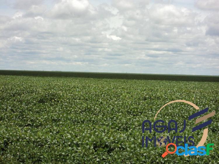 Fazenda em silvanópolis-to | 1.652 alqueires | lavoura