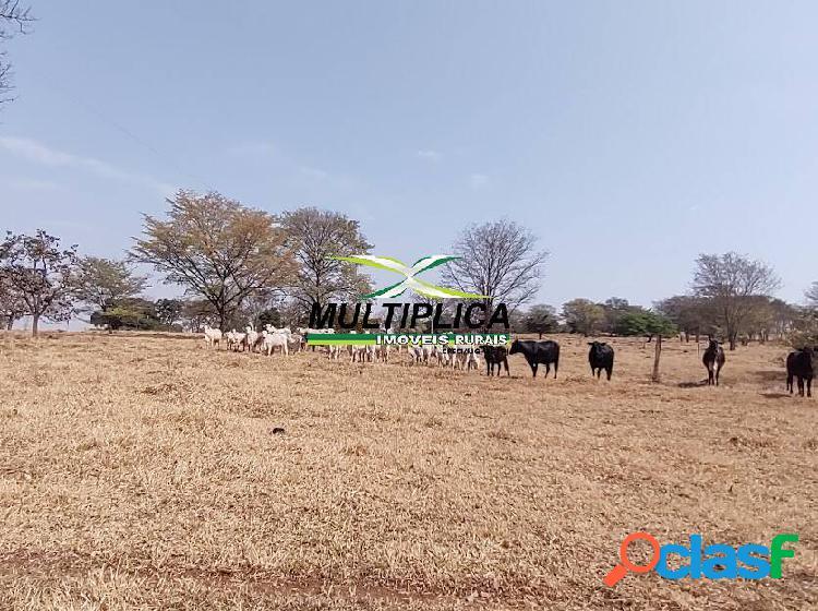 Fazenda santa vitória, dupla aptidão, 580 ha, r$ 34.435 por ha