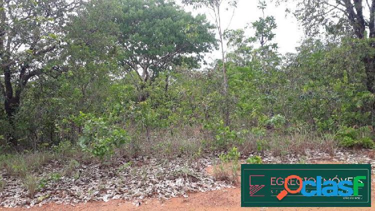 Fazenda com 1.645 hectares no municipio centenario (to)