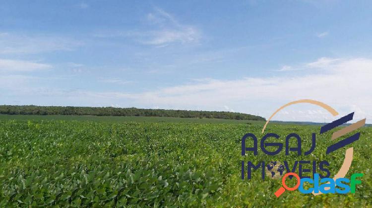Fazenda em água boa-mt | 623 alqueires | dupla aptidão