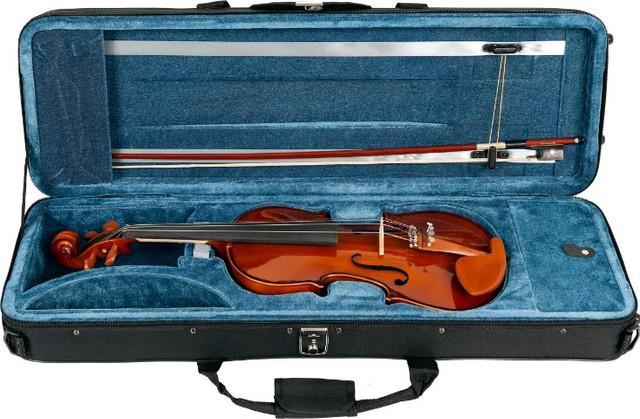 Violino eagle ve 441 4/4 -novo-aceito trocas- parcelo até