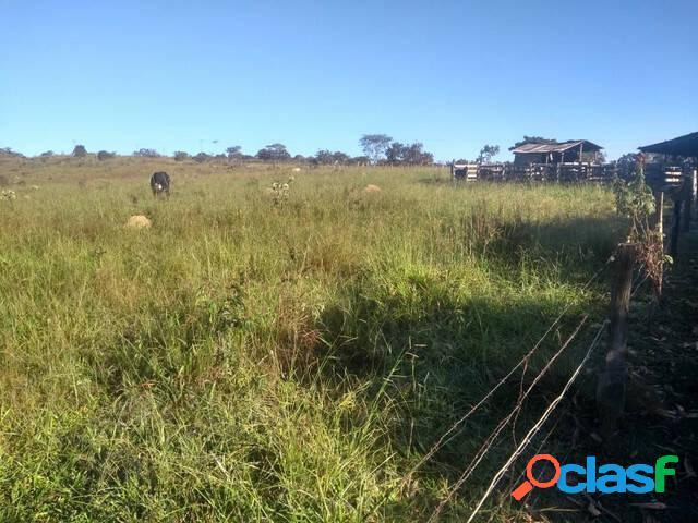 Vende-se - bela fazenda com 20 alqueires - 15m do plano piloto