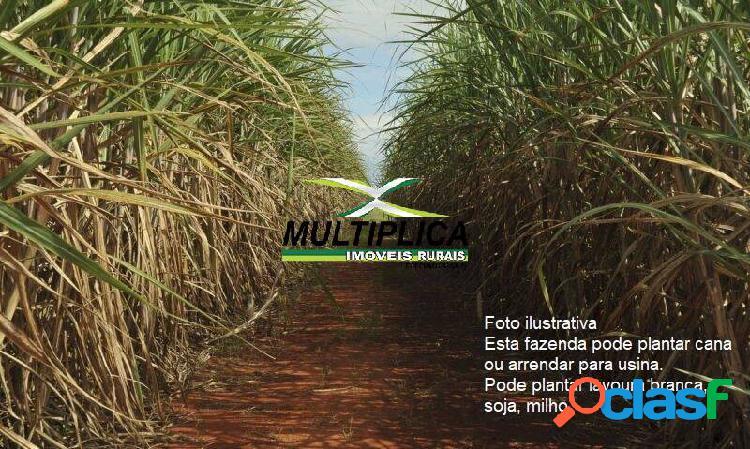 Fazenda monte alegre de minas mg, agricultura, pecuária, 261 ha,r$ 65000 ha